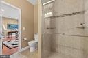 Guest House Bathroom 2 - 40543 COURTLAND FARM LN, ALDIE