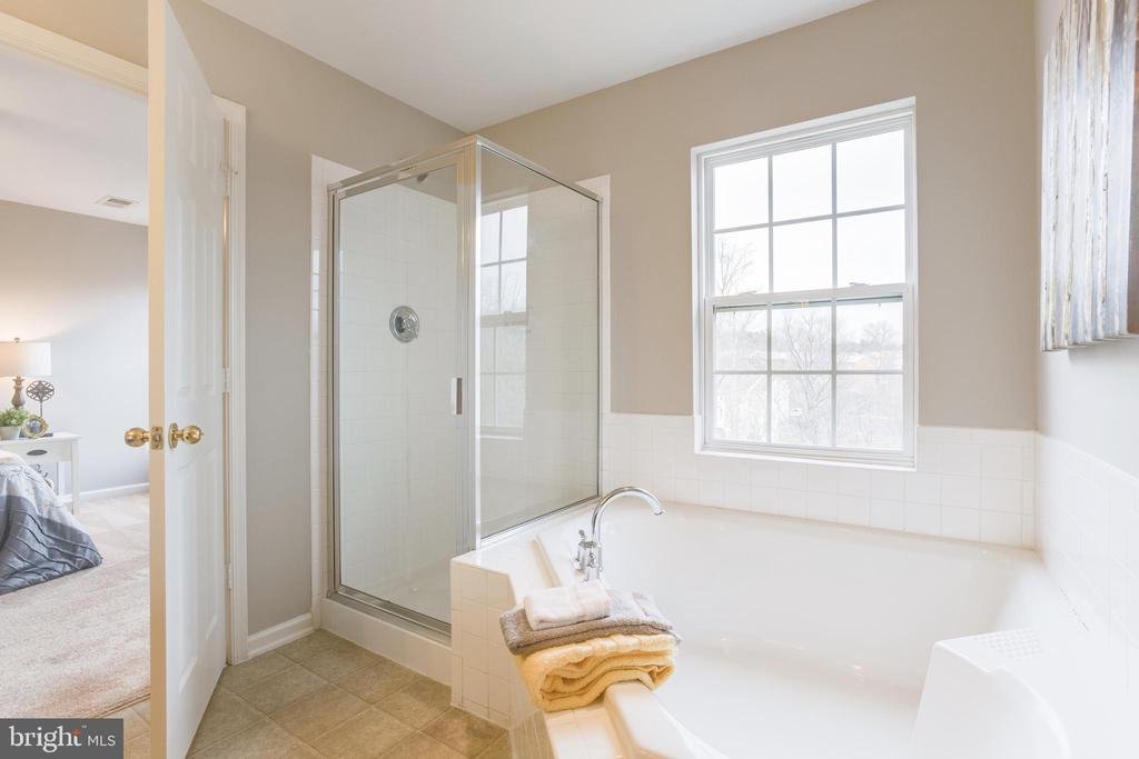 Soaking Tub and Separate Shower - 156 EXECUTIVE CIR, STAFFORD