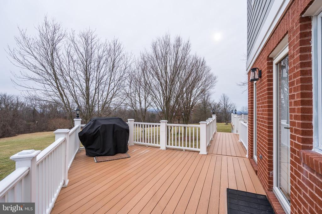 Expansive composite deck on back of home - 38853 MOUNT GILEAD RD, LEESBURG