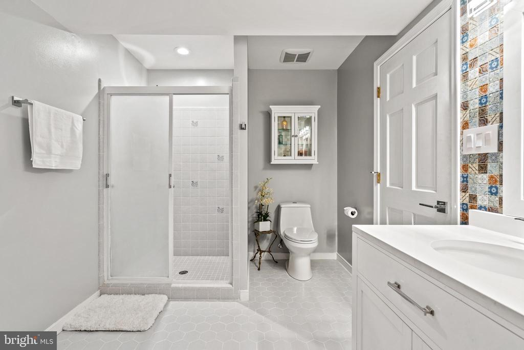 Lower level bathroom #4 - 38853 MOUNT GILEAD RD, LEESBURG