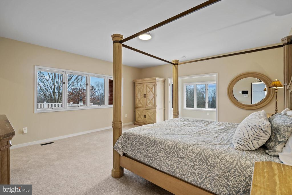 Large main floor primary bedroom with new carpet - 38853 MOUNT GILEAD RD, LEESBURG
