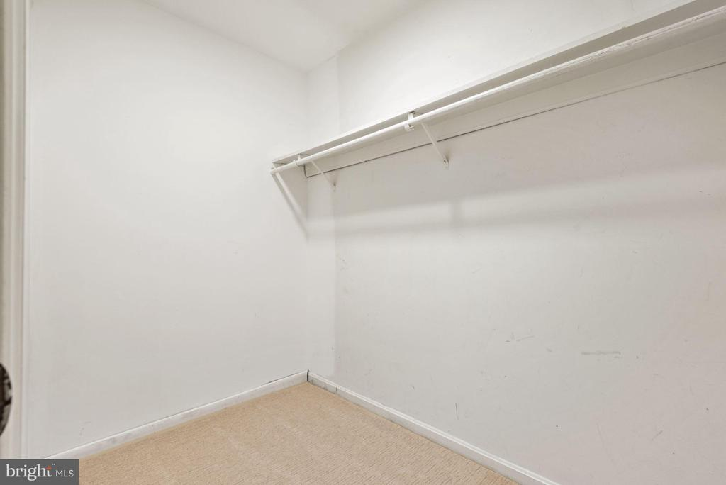 Another amazing walk-in closet - 3145 14TH ST S, ARLINGTON