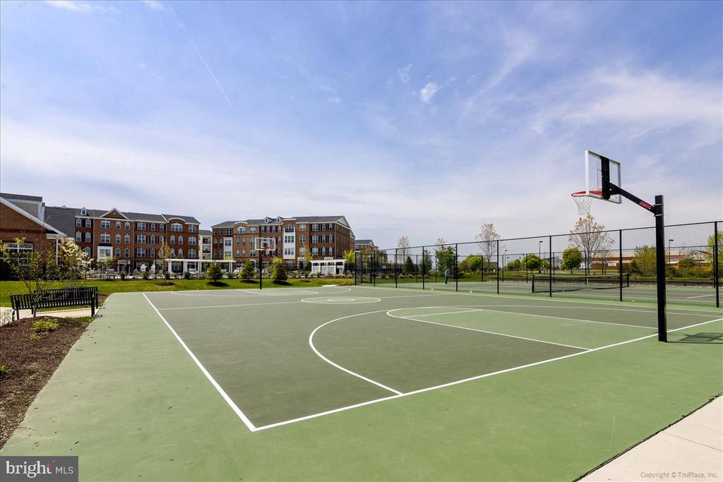 Basketball court - 43137 WEALDSTONE TER, ASHBURN