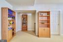 Lower Level Bonus Room #2: interior finished space - 20449 SWAN CREEK CT, POTOMAC FALLS