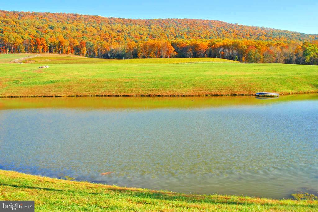 Fish the 4 stocked ponds on your private retreat - 12138 HARPERS FERRY RD, PURCELLVILLE