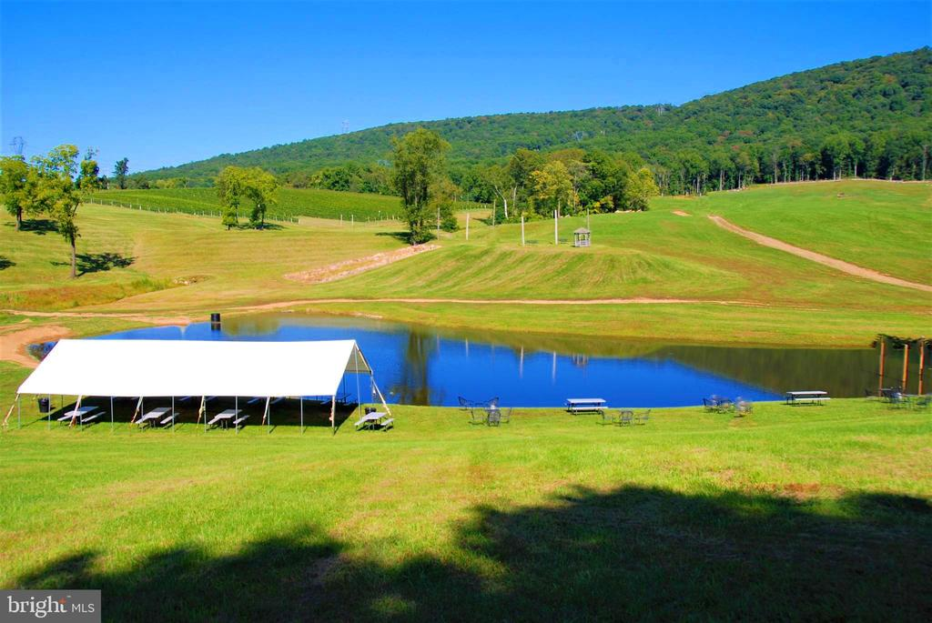 Views of mountains, ponds and vineyards - 12138 HARPERS FERRY RD, PURCELLVILLE