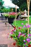 Summertime on the patio - 12138 HARPERS FERRY RD, PURCELLVILLE