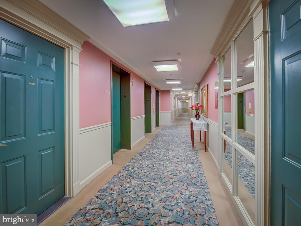Riverbend hallway - 19385 CYPRESS RIDGE TER #1103, LEESBURG
