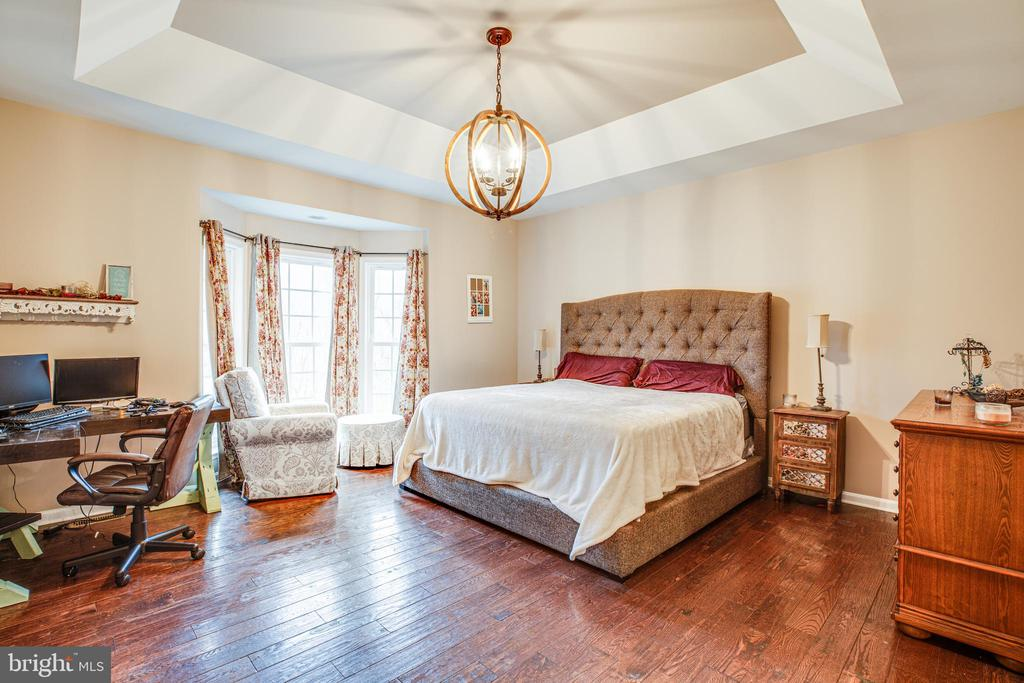 Primary Bedroom with Tray Ceiling - 229 COLEBROOK RD, FREDERICKSBURG