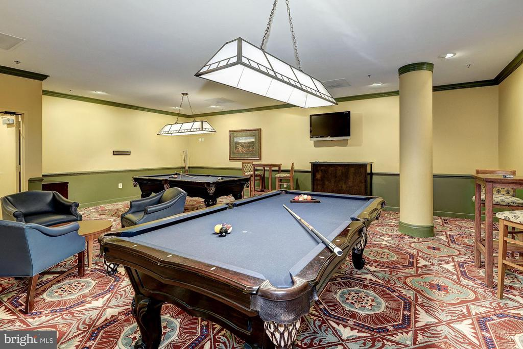 Community Billiards Room - 19350 MAGNOLIA GROVE SQ #103, LEESBURG