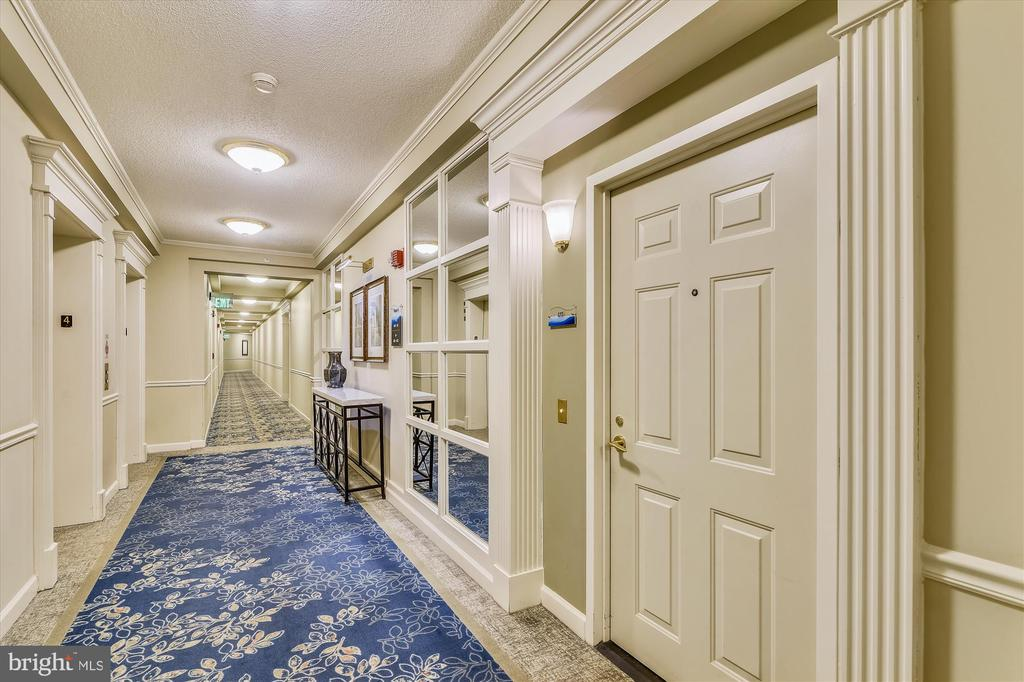Walk off the elevator and into your home - 19375 CYPRESS RIDGE TER #411, LEESBURG