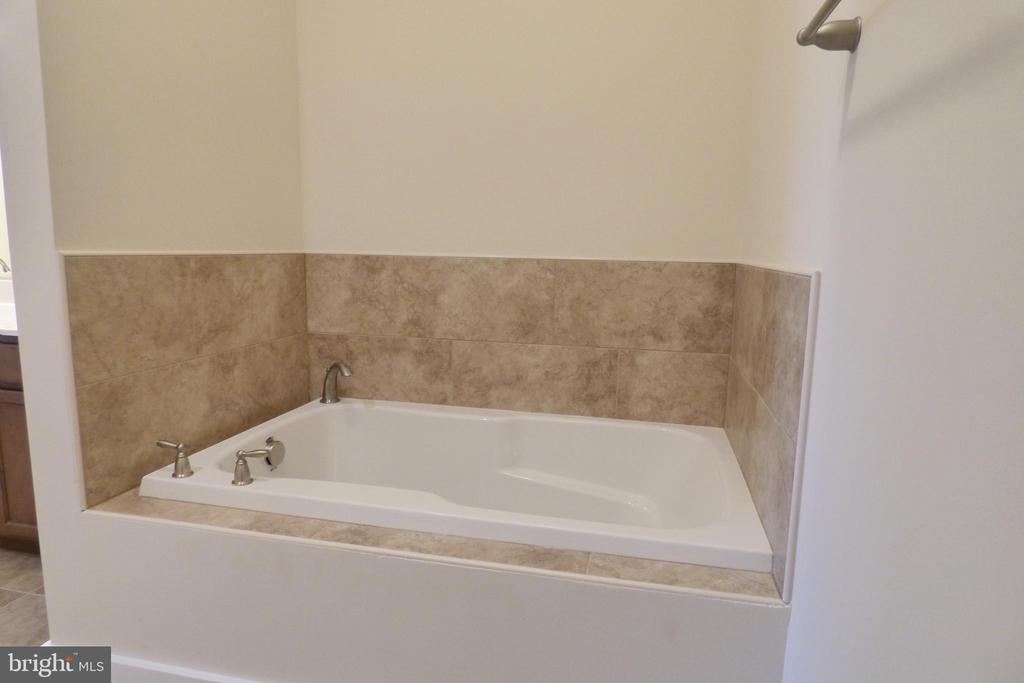 2nd Primary Soaking Tub Basement - 1066 LAKEVIEW DR, STAFFORD