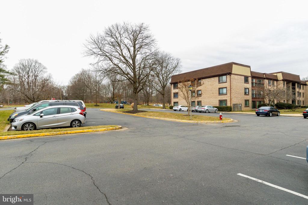 Parking lot/Plenty of parking! - 3031 BORGE ST #101, OAKTON