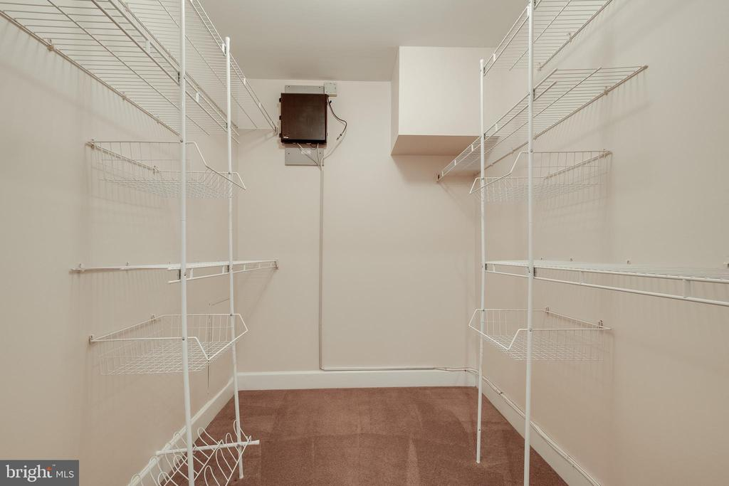 Walk in closet! - 3031 BORGE ST #101, OAKTON