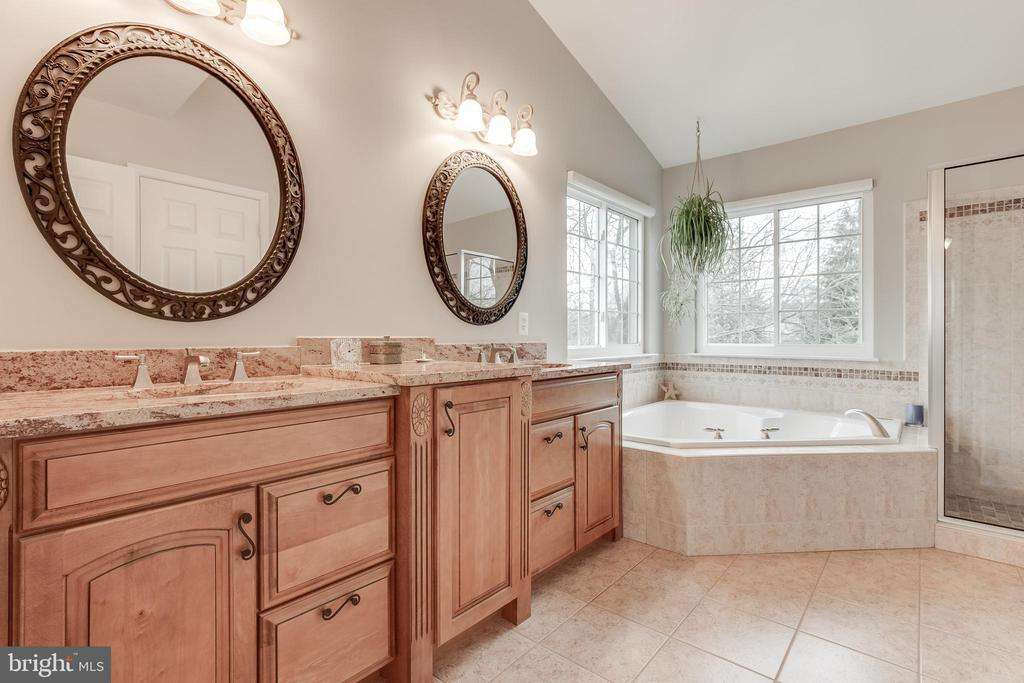 Updated Primary Bath - Tub, Shower & Water Closet - 609 MICHAEL PATRICK CT SE, LEESBURG