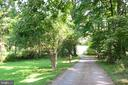 TREE-LINED DRIVEWAY - 10215 HUNTER VALLEY RD, VIENNA