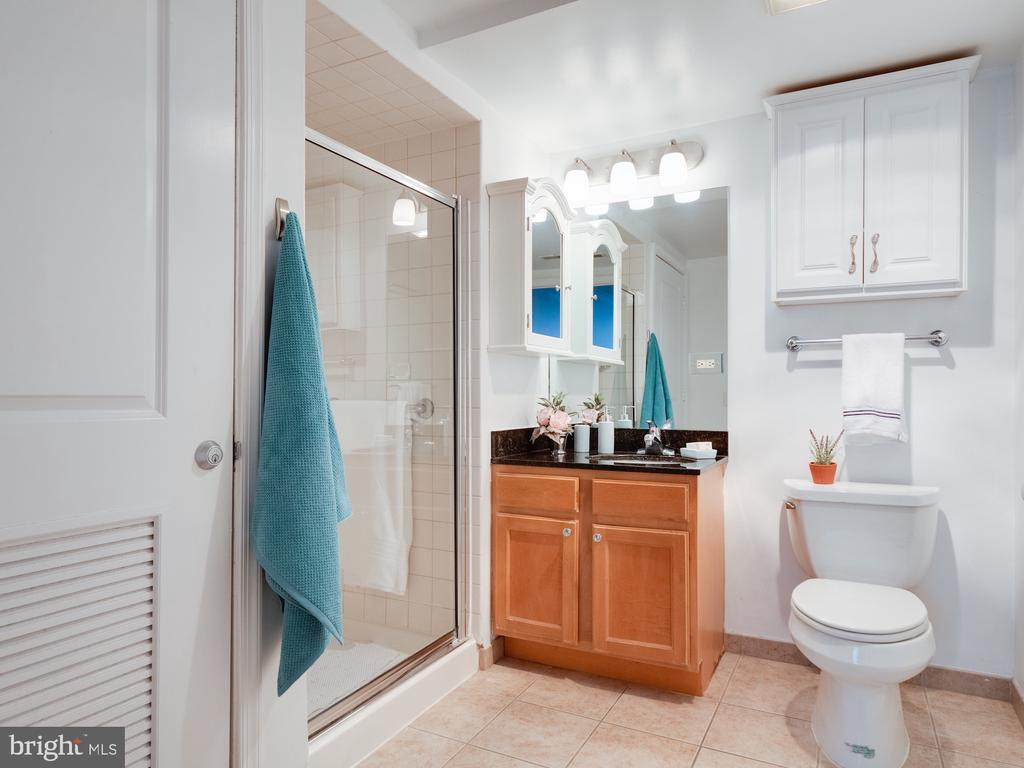Primary bath with wide shower entry.  Handicap acc - 880 N POLLARD ST #201, ARLINGTON