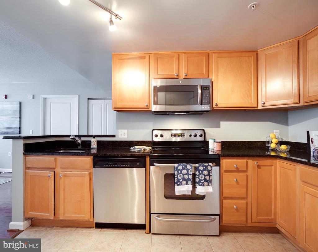 Granite counters/SS appliances - 880 N POLLARD ST #201, ARLINGTON