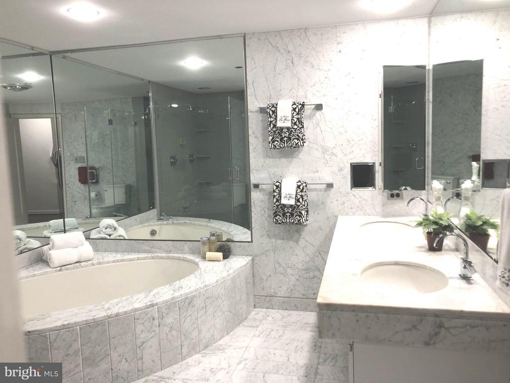 Master Bath Soaking Tub and Dual Sink Vanity - 1300 CRYSTAL DR #PENTHOUSE 14, ARLINGTON