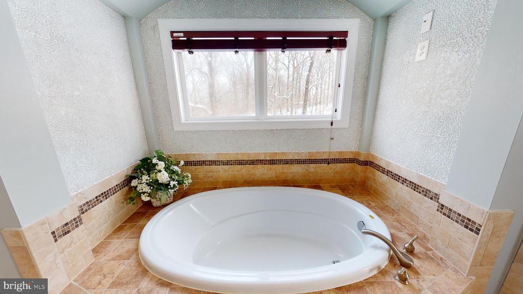 Owner's bathroom soaking tub - 206 GREENHOW CT SE, LEESBURG