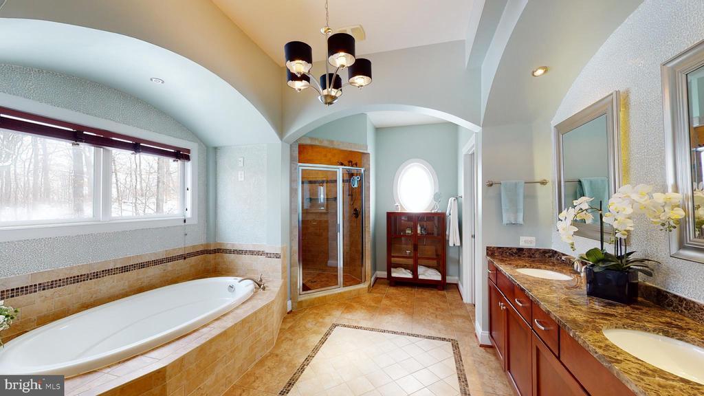 Owner's bathroom - 206 GREENHOW CT SE, LEESBURG
