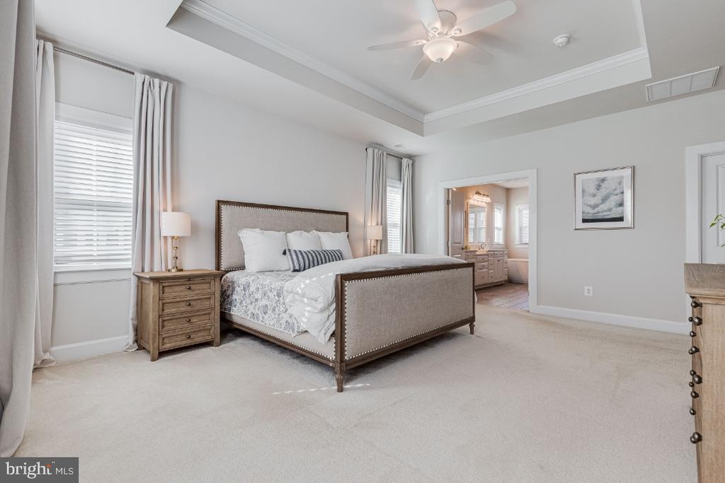 Primary Owners Bedroom with Tray Ceiling - 23581 AMESFIELD PL, ALDIE