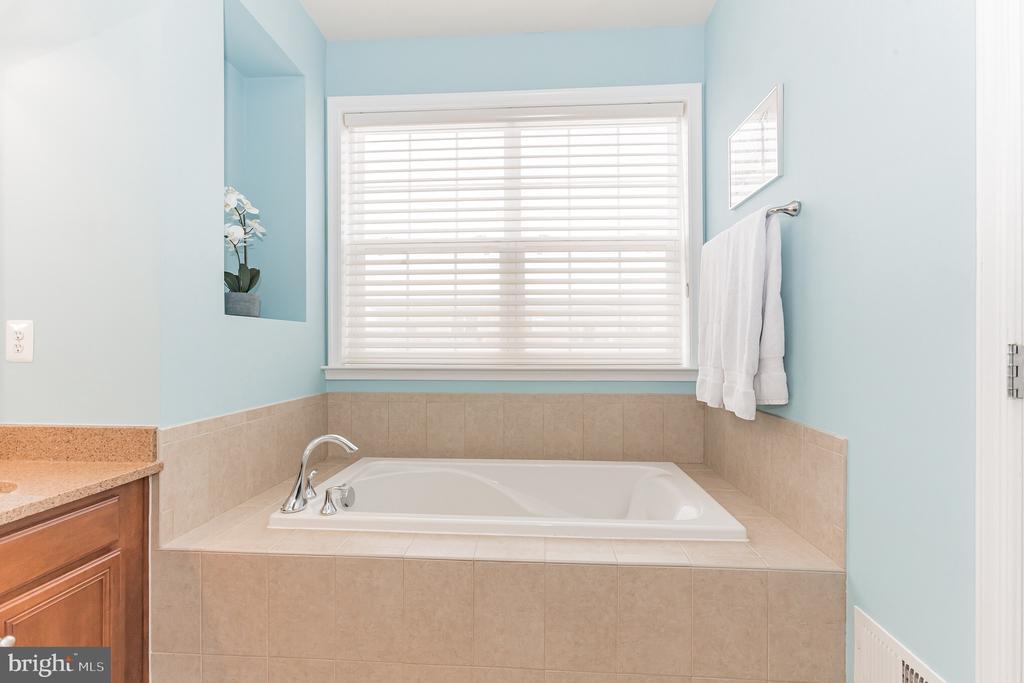 Separate soaking tub - uh huh. - 22702 VERDE GATE TER, ASHBURN