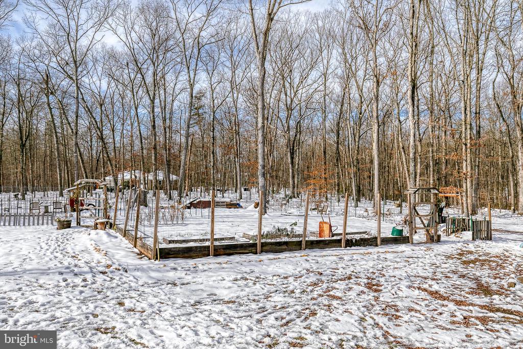 Garden beds are ready for spring- fruit trees also - 24 CARDINAL DR, FREDERICKSBURG
