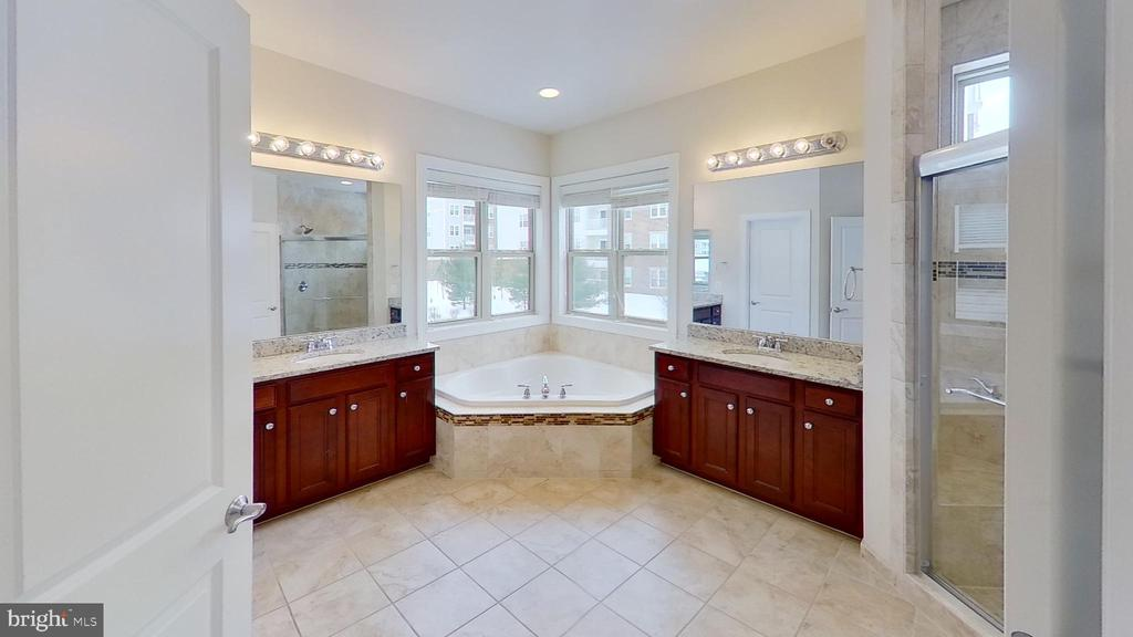 Primary bath - 20635 HOLYOKE DR, ASHBURN