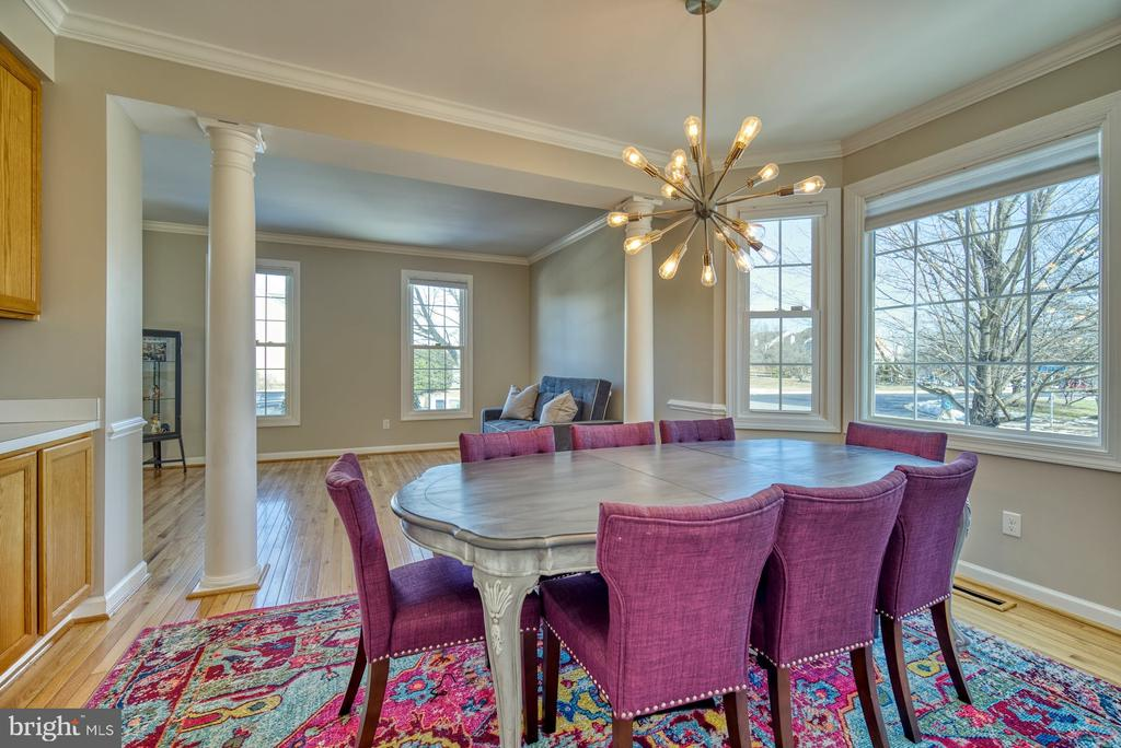 House is Filled with Natural Light - 21033 FOWLERS MILL CIR, ASHBURN
