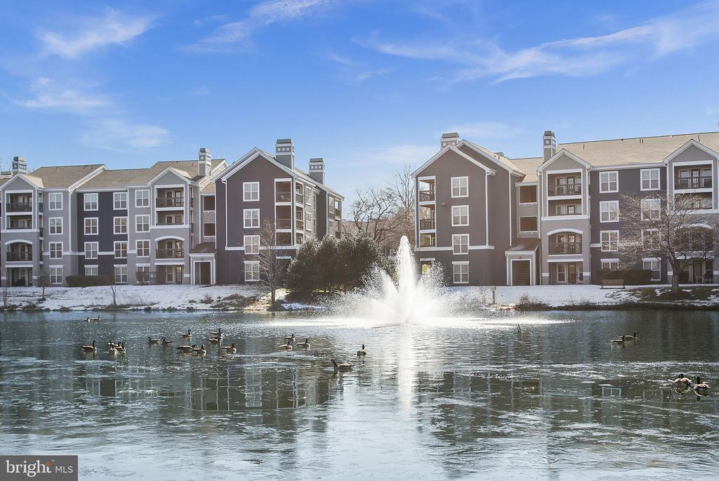 Fabulous Water Views from Every Winodw! - 14305 CLIMBING ROSE WAY #205, CENTREVILLE