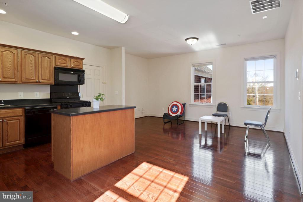 Separate Apartment Kitchen 2nd LVL and Living Room - 2509 BRIGGS CHANEY RD, SILVER SPRING