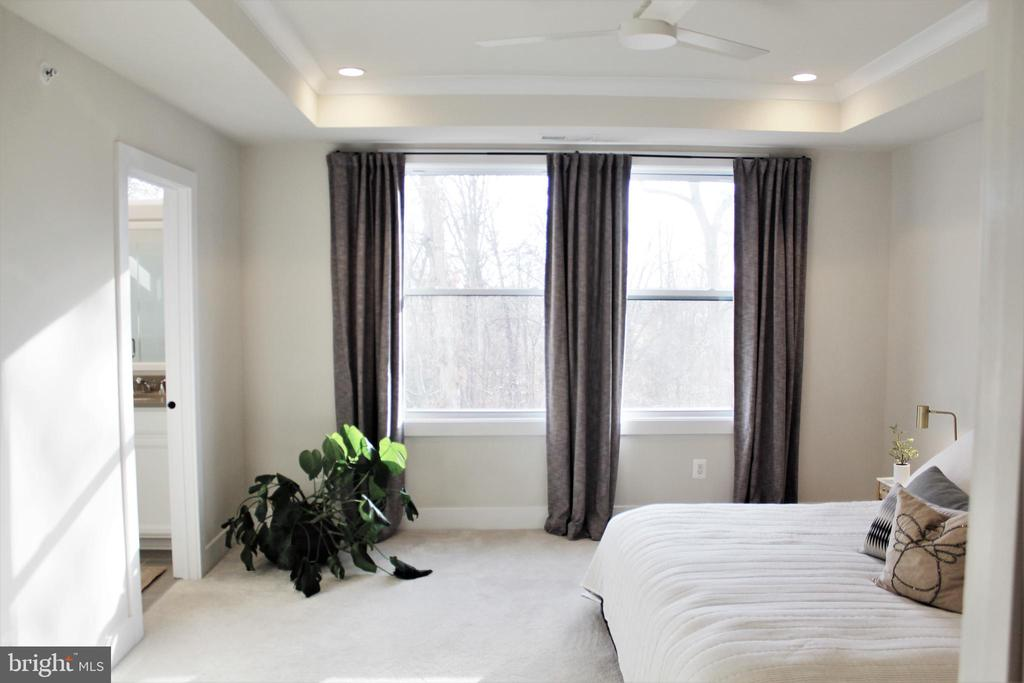 Owners Suite w/Tray Ceiling, and Recessed Lights - 42502 MILDRED LANDING SQ, ASHBURN