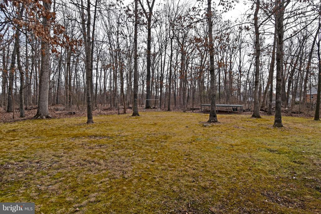 Backyard - 5203 GLEN MEADOW RD, CENTREVILLE