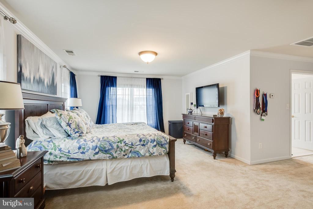 Master Bedroom - 903 CRESTVIEW TER, WINCHESTER