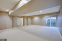 Walk-out basement! - 1002 JONS PL, FREDERICKSBURG