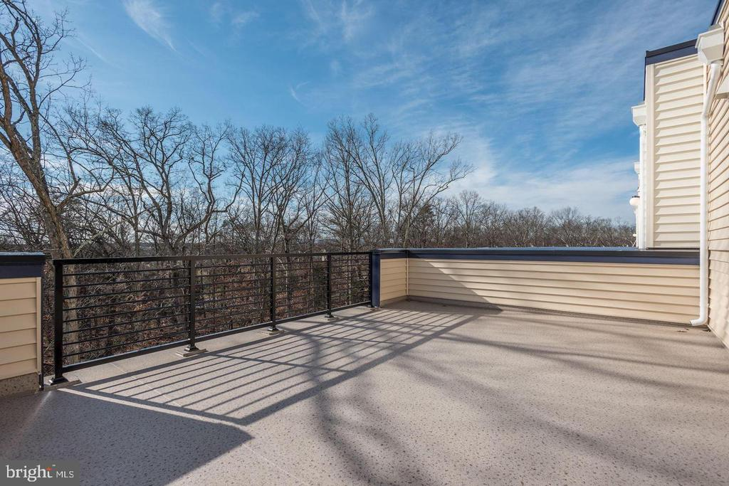 Large Rooftop Terrace - 42502 MILDRED LANDING SQ, ASHBURN