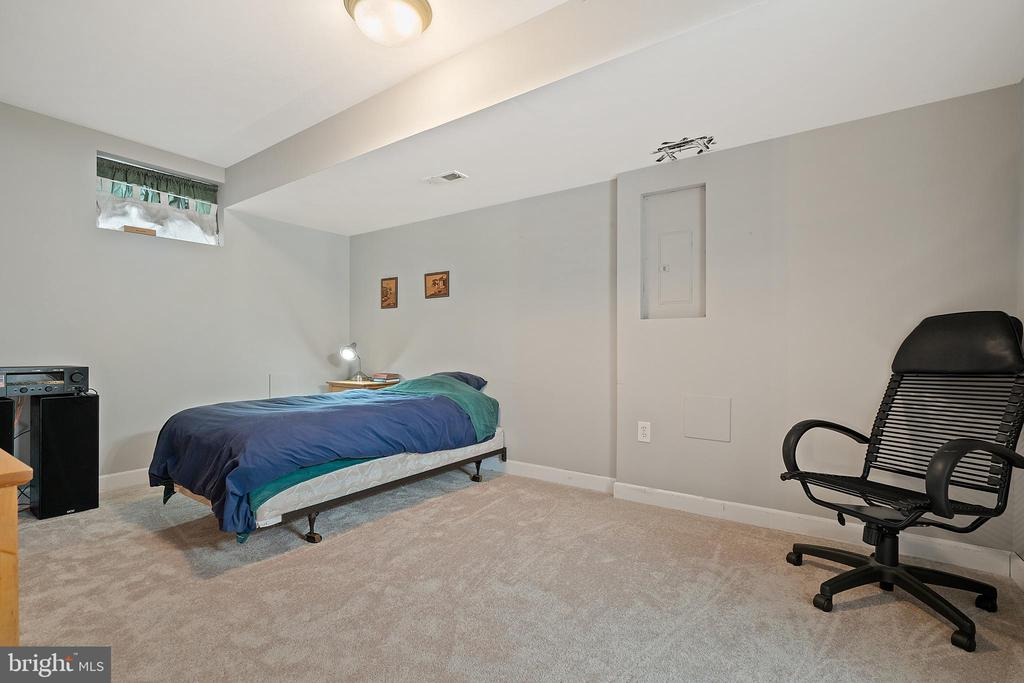 Lower Level Fin. Room (Add'l Bedroom / Storage) - 18279 MAPLE SPRING CT, LEESBURG