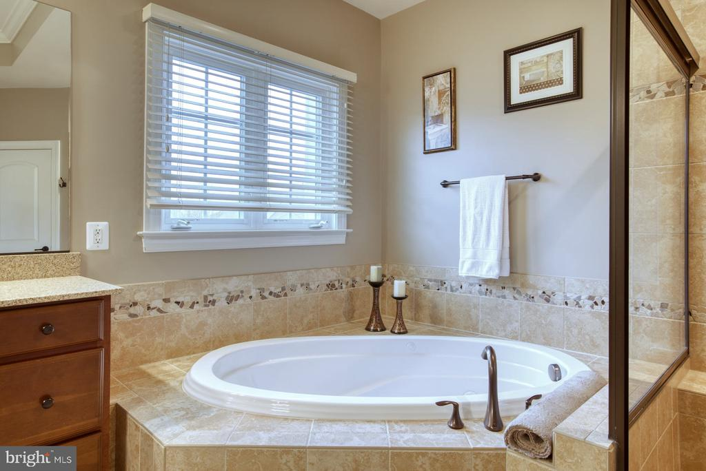 Primary Bath - 24955 EARLSFORD DRIVE, CHANTILLY