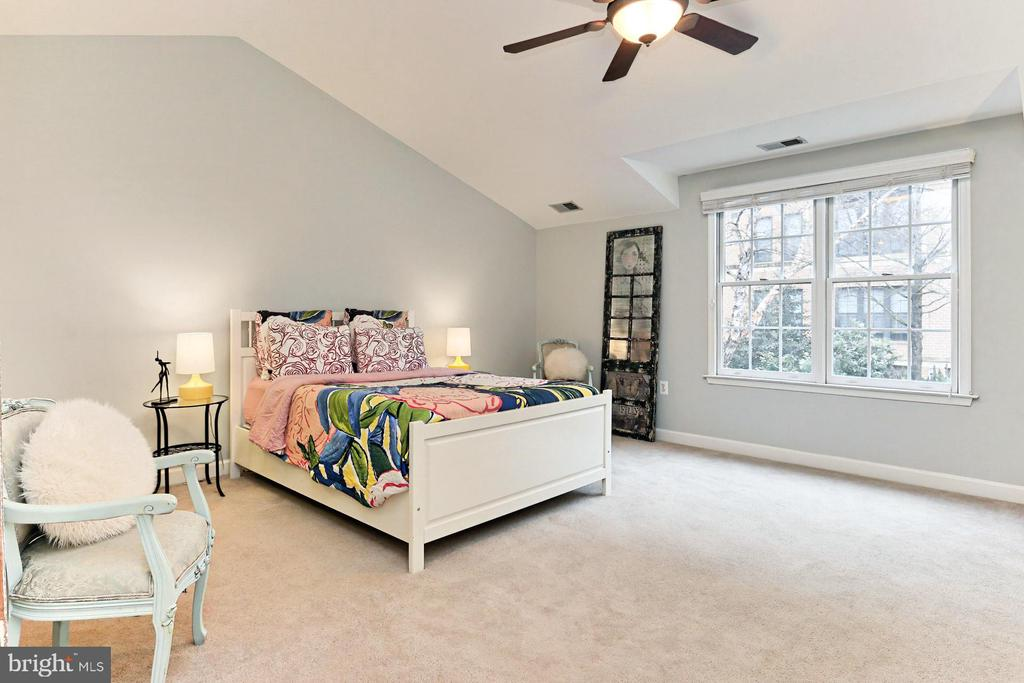 Large In-Law/Au Pair Suite w/Vaulted Ceilings - 425 PARK AVE, FALLS CHURCH