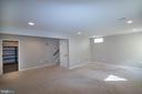Fully finished basement - 1110 HEARTHSTONE DR, FREDERICKSBURG
