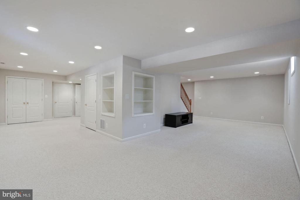 Rec Room in Lower Level has so many possibilities - 20004 HAZELTINE PL, ASHBURN