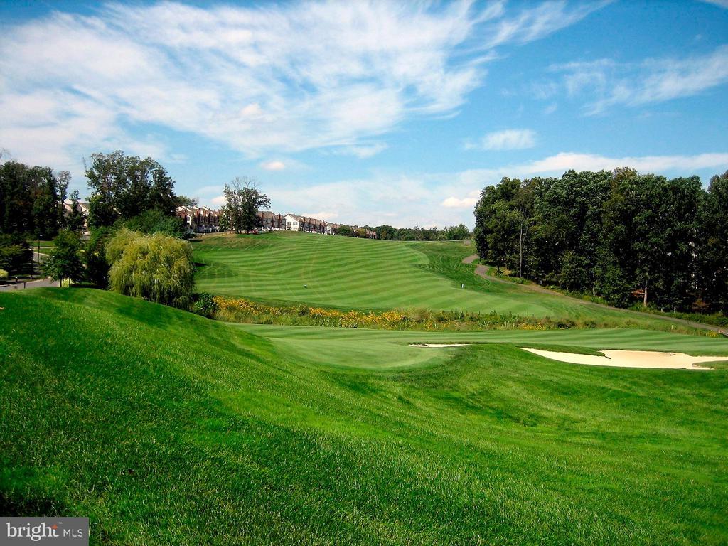 Community Golf Course - 20004 HAZELTINE PL, ASHBURN