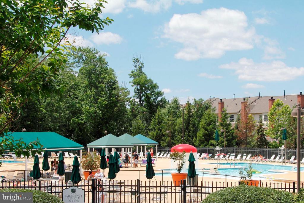 Community Pool - 20004 HAZELTINE PL, ASHBURN