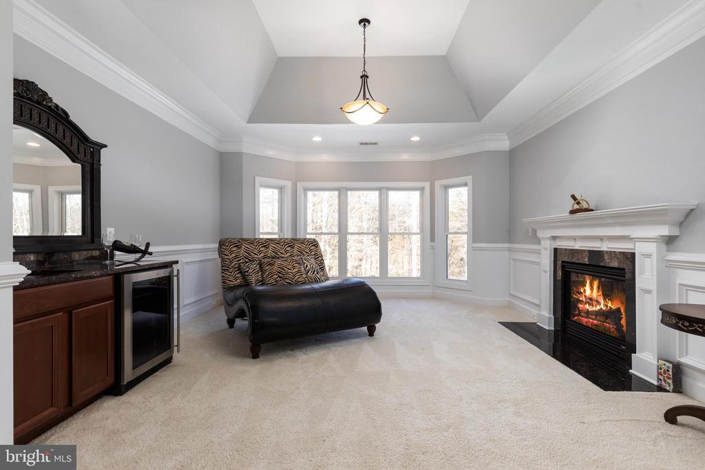 Master sitting Area with Fireplace - 6500 BRIARCROFT ST, CLIFTON