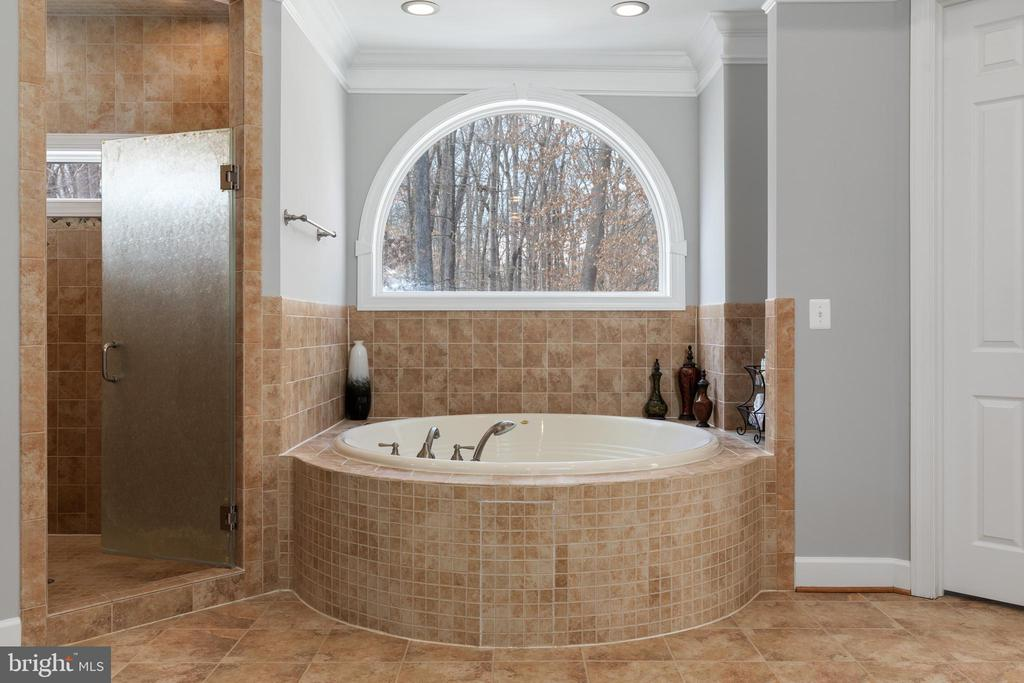 Master Ensuite Jetted Soaking Tub - 6500 BRIARCROFT ST, CLIFTON