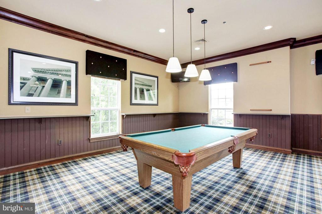 Clubhouse- friendly competition never hurt anyone! - 12954 CENTRE PARK CIR #304, HERNDON