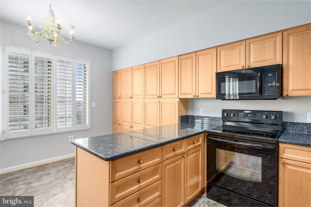 Eat-in Kitchen/breakfast area - 19365 CYPRESS RIDGE TER #707, LEESBURG