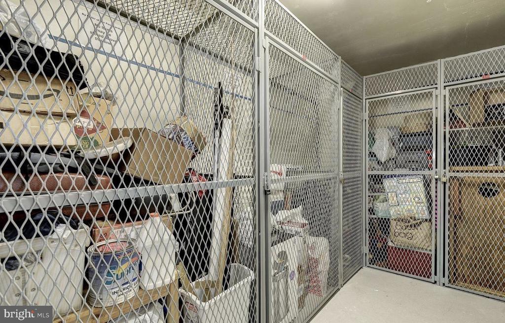 Extra Storage Space on Same Floor as Unit - 851 N GLEBE RD #416, ARLINGTON
