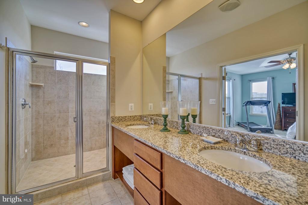 Master Bathroom with Oversized Shower - 22908 BOLLINGER TER, ASHBURN